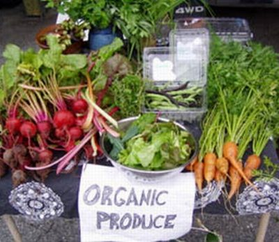 To go for Organic products or not? My thoughts